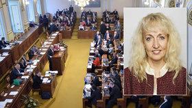 Pavlína Nytrová svým vystoupením pobouřila některé poslance.