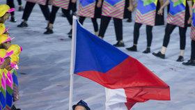 Lukáš Krpálek s českou vlajkou vedl české sportovce na slavnostní zahájení olympiády v Rio de Janeiru.