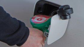 Benzinový stojan (ilustrační foto)