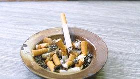 Češi patří mezi největší kuřáky v EU.