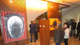 Manželé darovali svou vzácnou sbírku umění a část vystavili v žatecké Galerii Sladovna.