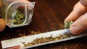 Argentinský Senát schválil legalizaci marihuanového oleje a jiných derivátů konopí pro zdravotní účely.