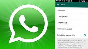 WhatsApp sdílí vaše telefonní číslo s Facebookem. Můžete tomu ale zabránit.