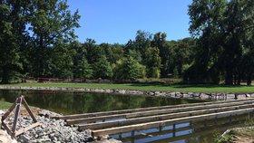 Nový rybník ve Stromovce