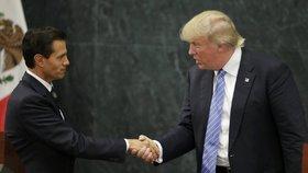 Mexický prezident Nieto a nastupující americký prezident Donald Trump si jistě mají co říct.