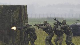 Dny NATO v Mošnově u Ostravy: Ukázka přepadení objektu a osvobození rukojmích