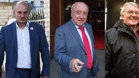 Přestože nejsou veřejnosti neznámí, v politice neuspěli. Martin Konvička, Vlastimil Harapes a Felix Slováček u voleb zcela propadli.