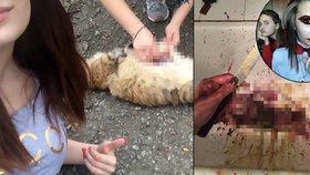 Dívky měly brutálně týrat zvířata a jejich smrt vysílat online.