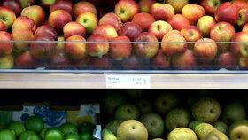 Na Žofíně se řešila i bezpečnost potravin a situace kolem dovozu polských jablek (ilustrační foto).