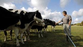 Na atmosférický dopad chovu dobytka často upozorňují i vegani.