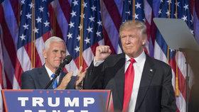 45. prezident USA Donald Trump