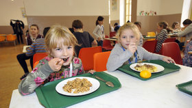 Školní obědy by podle ministra Plagy (ANO) mohly být zdarma jen pro děti z mateřských škol a prvních stupňů a z rodin s přídavky na děti.