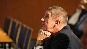 Vicepremiér a šéf hnutí ANO Andrej Babiš