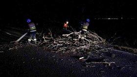 Sníh a vichřice pustoší Česko: Silnice pokryly větve a zlámané stromy