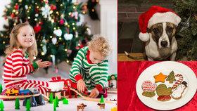 Děti si často k Vánocům přeji zvířátko. Na kolik vás vyjde takový pejsek?