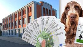 Institut získal 65 milionů z EU. Teď je před krachem.
