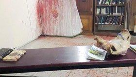 Krev byla i na stěně synagogy