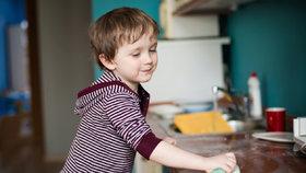 Německý tým vědců zkoumal, co skrývají houbičky, kterými lidé doma myjí nádobí či utírají nábytek v kuchyni.