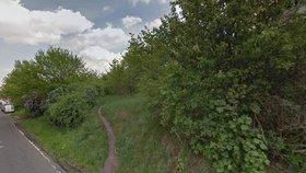 Takto vypadala cesta podél třešňového sadu v minulosti.