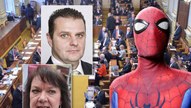 Spiderman a poslanci