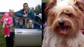 Krutí rodiče nechali psa umrznout na letišti, protože ho při odbavení nechtěli pustit do letadla.