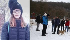 Pátrání dobrovolníků po ztracené Míše (12) v sobotu 28. ledna