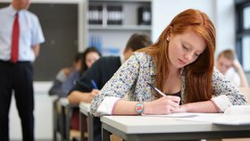 Iniciativa Maturitní data - odtajněno ve čtvrtek na internetu zveřejnila zadání jednotných přijímacích zkoušek, které se konaly ve středu.