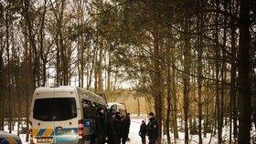 Policisté prohledávali asi kilometr čtvereční lesa na Kralovicku.