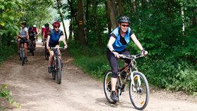 Cyklisté (ilustrační foto)