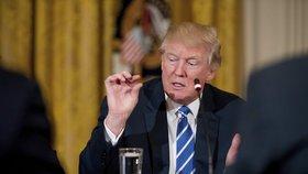 Donald Trump je mimořádně znepokojen z dění kolem úniku dat CIA, uvedl jeho mluvčí Spicer.
