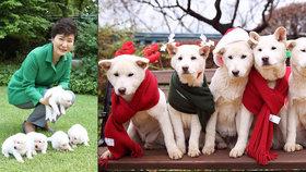 Jihokorejská exprezidentka Pak Kun-hje nechala své psy v prezidentském paláci.