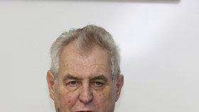 Prezident republiky Miloš Zeman se v úterý rozhodl vyhovět jednomu žadateli o milost.