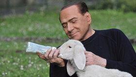 Bývalý italský premiér Silvio Berlusconi se dal na záchranu zvířat.