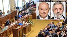 Sněmovna si vydala poslance Novotného a Borku k trestnímu stíhání.