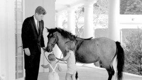 1962 - Netradiční návštěva v Bílém domě. Kennedyho děti přišly i s poníkem jménem Macaroni, jehož malé Caroline daroval tehdejší viceprezident L. Johnson.