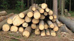 Podle Lesů ČR je ale certifikát, který navrhují Zelení, srovnatelný s tím, který už Lesy ČR používají.