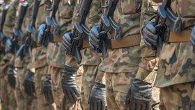 Česká armáda zřejmě bude moci vyslat až 290 vojáků do aliančních mnohonárodních bojových uskupení v Pobaltí.