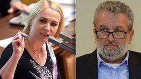 O ústavním zákonu se dohadovali například Jana Černochová (ODS) a Ivan Gabal (KDU-ČSL).