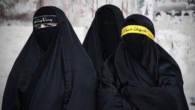 Rakouský zákon zakazuje kompletní zakrývání obličeje.