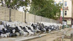 Protipovodňové zábrany v Praze během velké vody roku 2002