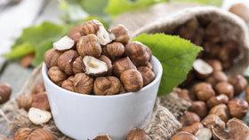 Lískové ořechy (ilustrační foto)