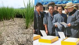 Sucho v Severní Koree