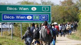 Snímek z roku 2015 ukazuje proud migrantů na maďarsko-rakouské hranici.