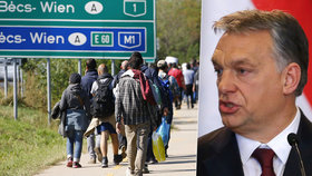 Nizozemsko přirovnalo Orbánovu vládu k náboženským extrémistům, Maďarsko stáhlo velvyslance.