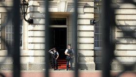 Britská policie v neděli na několik hodin zadržela muže, kterého podezřívala z toho, že se snaží dostat do Buckinghamského paláce s elektrickým paralyzérem. Později se ukázalo, že šlo spíše o nedorozumění (archivní foto).