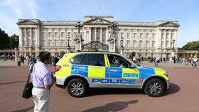 Britská policie zatkla muže podezřelé z neonacismu.