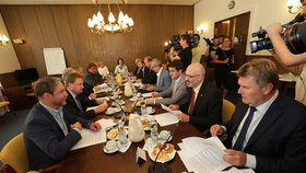 Jednání imunitního výboru o kauze Čapí hnízdo