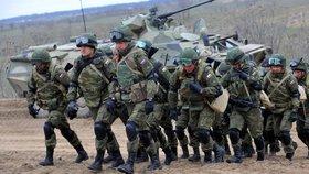 Válečných her Západ 2017 se zúčastní tisíce vojáků.