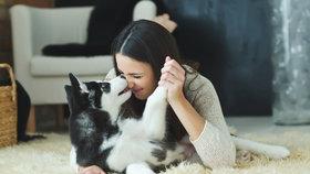 Psi a kočky zlepšují zdraví svých majitelů. A uklidní vás lépe než partner!
