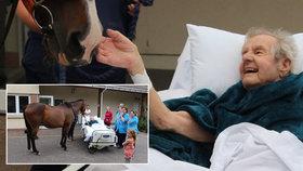 Umírající Patrick Saunders se dočkal krásného posledního přání. V hospici ho navštívil kůň.